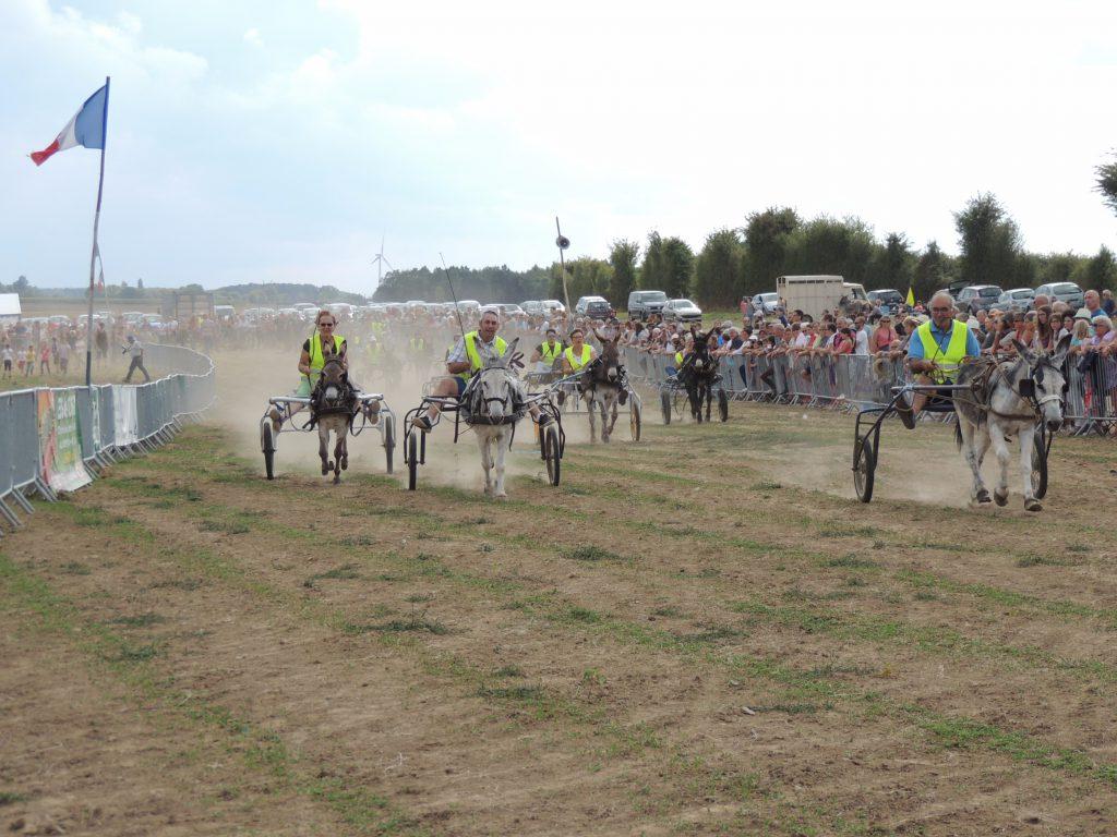 La fête des ânes, la course des maires de Mesnil-en-Ouche, Gisay-la-Coudre 15 août 2017